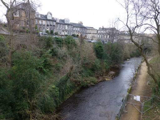 4-dean-terrace-bank-garden-from-the-top-of-st-bs-well-february-2013-513x385