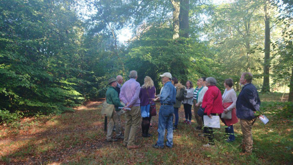 Sharing Repton volunteers in Warley Woods