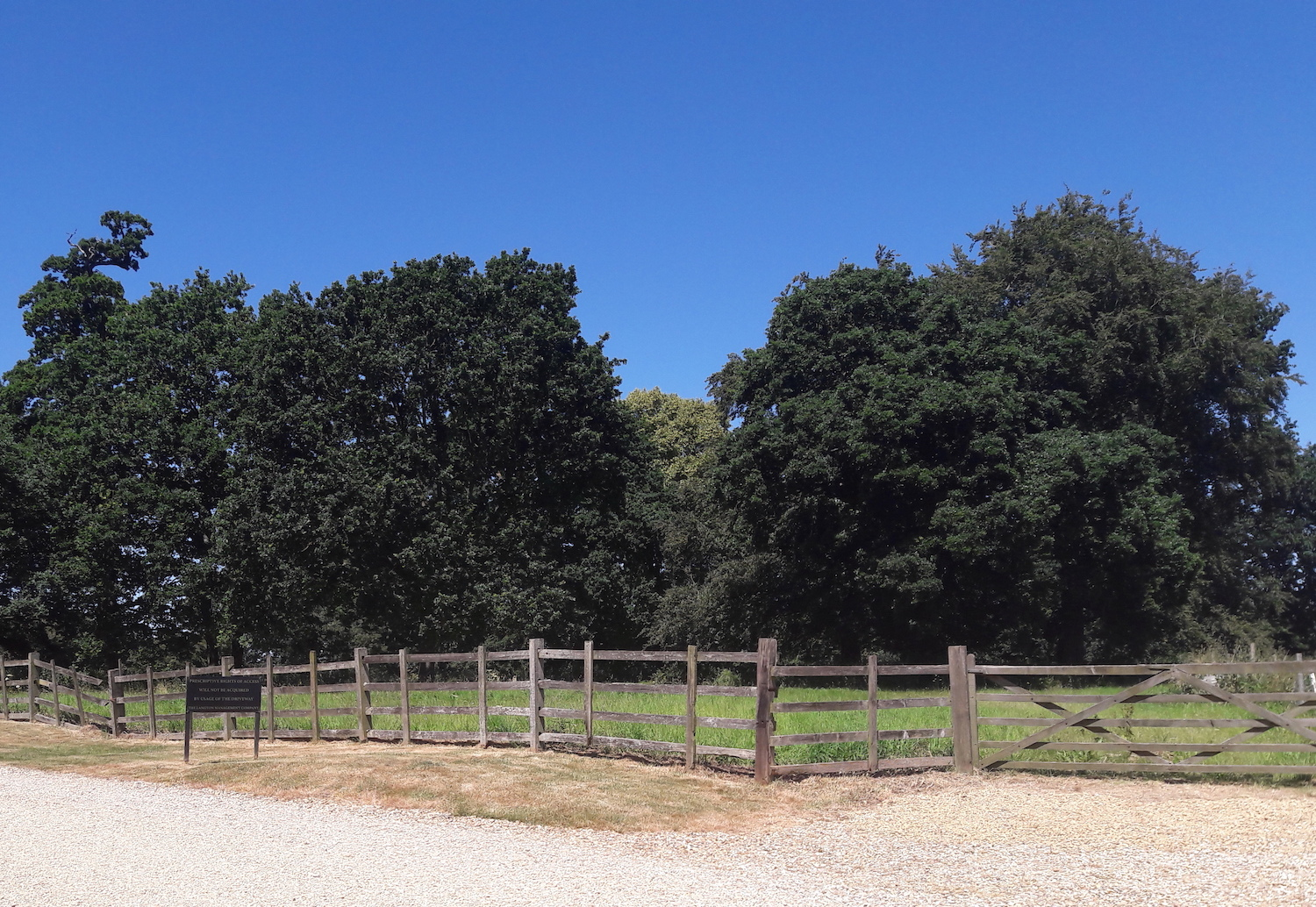 Langton Hall paddock in the parkland