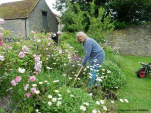 Volunteer gardeners at Chichele