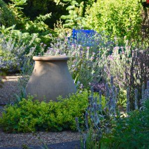 Denmans garden pot and blue bench
