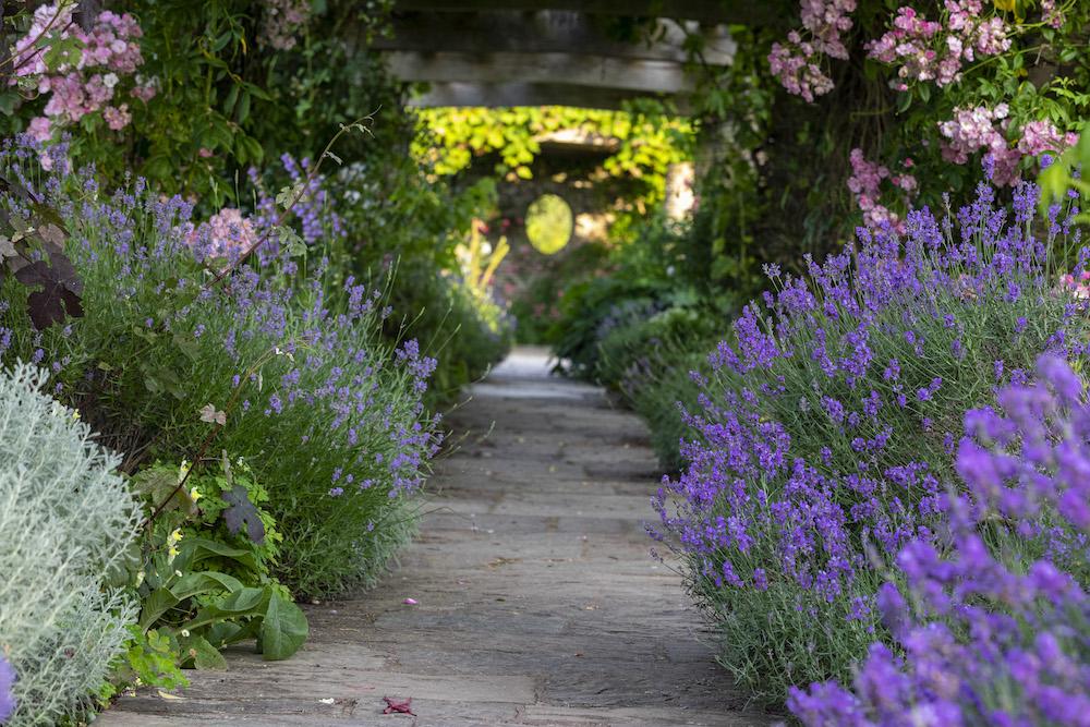 Pergola in the Hestercombe formal garden